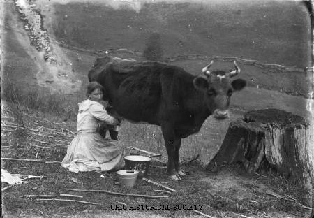 File:Woman Milking Cow.jpg