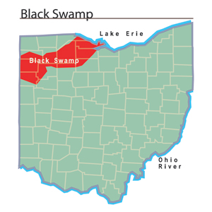 File:Black Swamp map.jpg